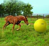 Maximus Power Play Ball Giant - Hästboll 100 cm
